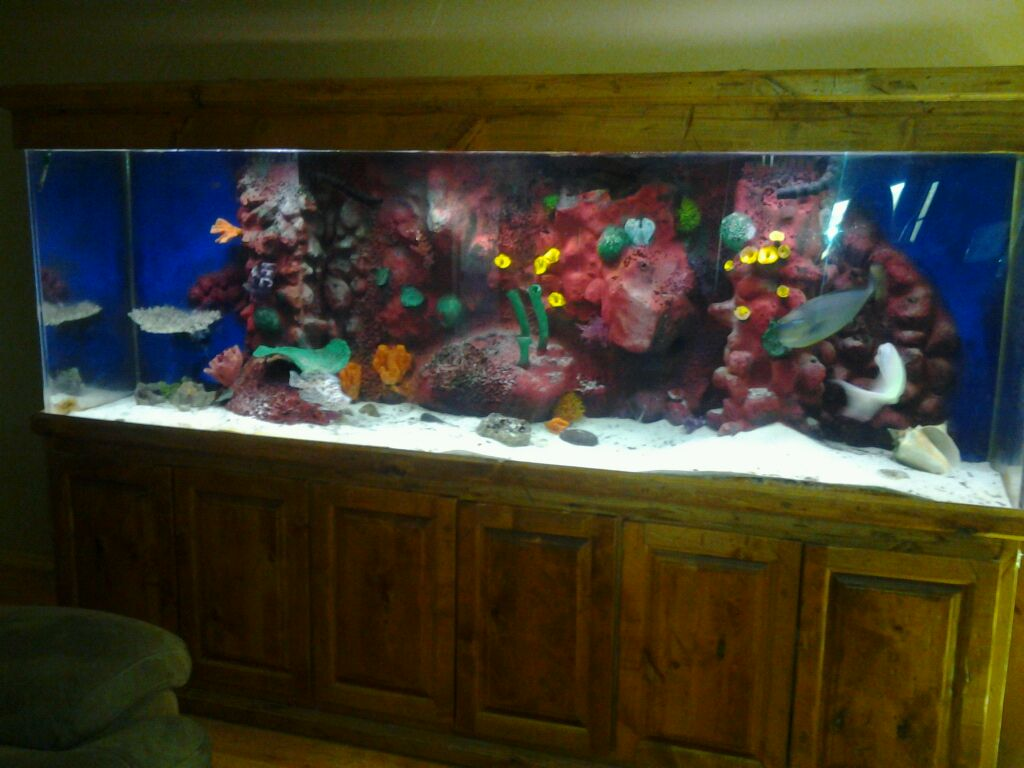 fish tanks for sale 300 gallon for sale 300 gallon fish