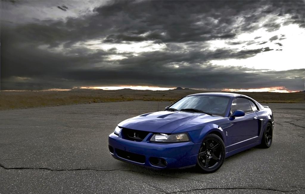 D Sonic Blue Cobra Sold F D De B