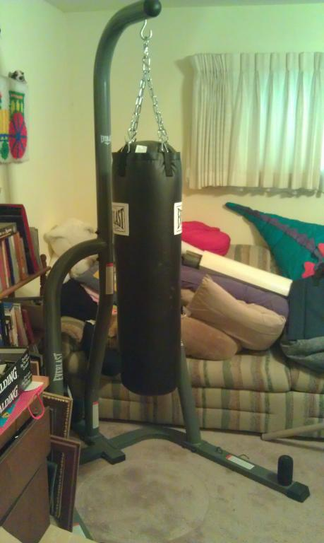 For Everlast Punching Bag Stand And Two Sets Of Boxing Gloves Truestreetcars