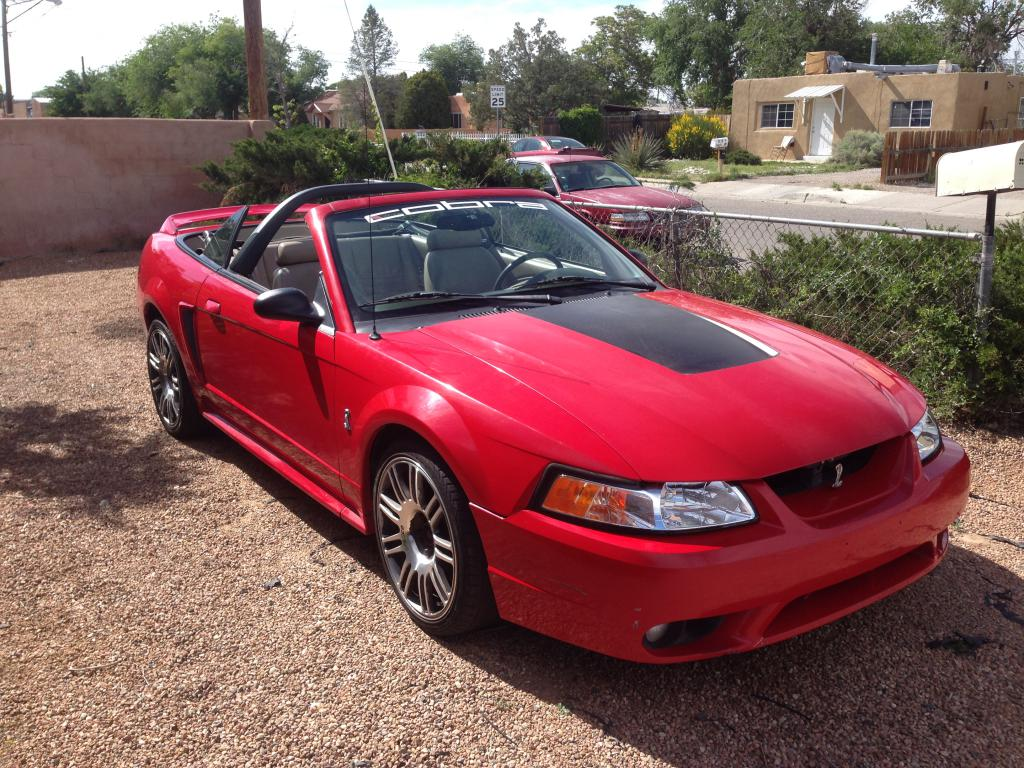For SaleTrade 1999 SVT Cobra Convertible  TrueStreetCarscom